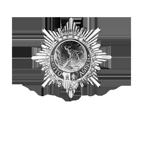 Logo Caballero Orden Merito